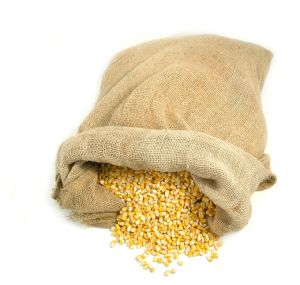 bag_of_maize